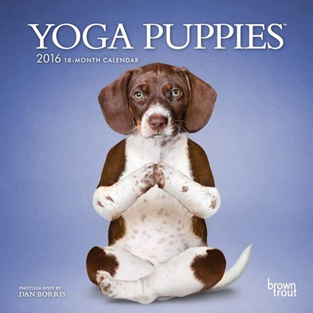 ビーチほかにできたYoga Puppies 2016 Calendar