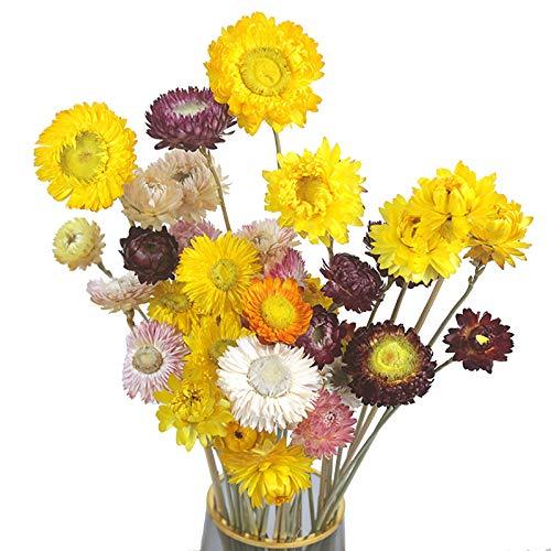 Flores Artificiales Decoracion Jarrones Naranjas flores artificiales decoracion jarrones  Marca HUAESIN