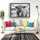Ghjxda Highland Cow Bull 5D DIY Diamond Painting Kits Black and White Cattle Buffalo Highland Cow Bison Diamond Painting Kits for Adults Full Drill Crystal Gem Arts Wall Decor 16' X 20'