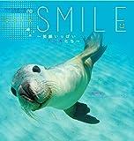 2016うみまーるミニムーンカレンダー `Smile−笑顔いっぱいアシカたち' (月の満ち欠け)