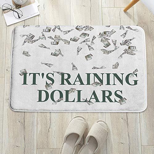 Alfombra de baño, Alfombrilla de baño de microfibra,Divertido Está lloviendo dólares Estados Unidos Cien Dinero Símbolo A, antideslizante, absorbente, lavable, para cuarto de baño, salón (60 x 100 cm)