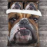 LINARUBE Juego de Ropa de Cama-Shar Pei, Pug, Cachorro, Perro, Mascota Genial, Animal,Juego de Funda Nórdica y 2 Funda de Almohada(Single 135x210cm)