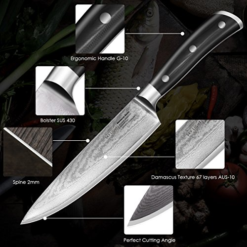 Damascus Chef Knife, 8-inch Kitchen Knife, AUS10V Japanese High Carbon Stainless Steel with Razor Sharp Blade/Gift Sheath/Gift Box Included
