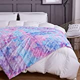 COCOPLAY W Fuax Fur Throw Blanket, Super Soft Fuzzy Lightweight Luxurious Cozy Warm Fluffy Plush Sherpa Purple Rainbow Microfiber Blanket for Bed Couch Living Room (Lavender, Throw(50'x65'))