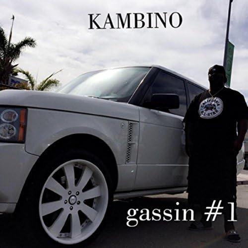 Kambino