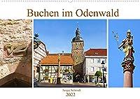 """Buchen im Odenwald (Wandkalender 2022 DIN A2 quer): Stadtwahrzeichen, die Mariensaeule und Buchener Fastnachtssymbol, der"""" Blecker"""" auf dem Cover und andere Bilder der schoenen Stadt. (Monatskalender, 14 Seiten )"""