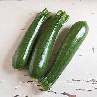 dunja zucchini seeds