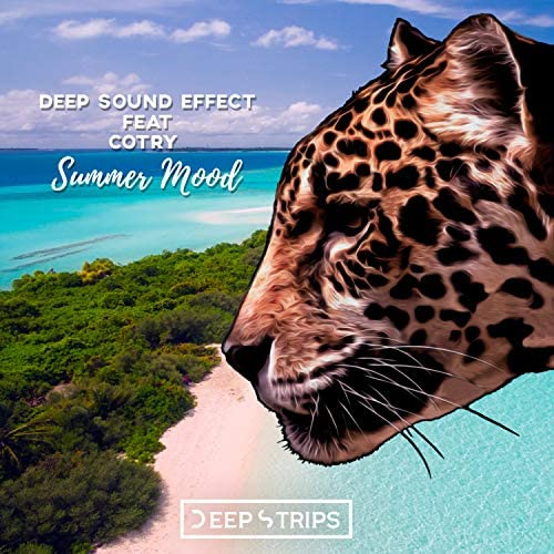 Deep Sound Effect & Cotry