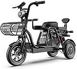 Bicicleta eléctrica 3 Rueda de bicicleta eléctrica de montaña adulto Vespa 48V 8AH 12 pulgadas bicicleta eléctrica con bloqueo eléctrico de la batería con el cargador rápido del asiento infantil desmo