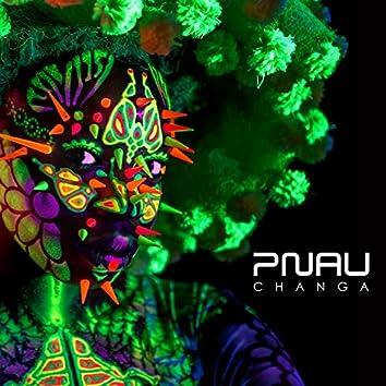 Changa (Remixes)