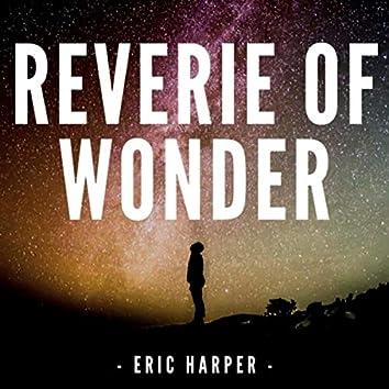 Reverie of Wonder