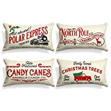 AVOIN Christmas Throw Pillow Cover, 12 x 20 Inch Winter Holiday Rustic Farmhouse Cushion Case for Sofa Couch Set of 4