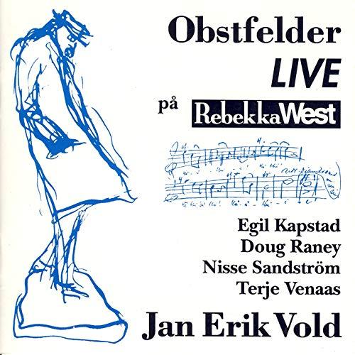 Jan Erik Vold: Hemmeligheten