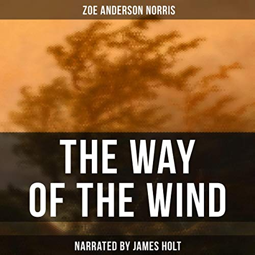 The Way of the Wind audiobook cover art