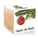 Feel Green Ecocube Sapin de Noël (Épicéa), Idée Cadeau (100% Ecologique), Grow-Your-Own/Kit Prêt-à-Pousser, Plantes Dans Des Cubes En Bois 7.5cm, Produit En Autriche