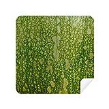 DIYthinker Green Pumpkin Peel Macro Photo Patterns Glasses Cleaning Cloth Phone Screen Cleaner