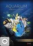 Aquarium 4K UHD Edition (gedreht in