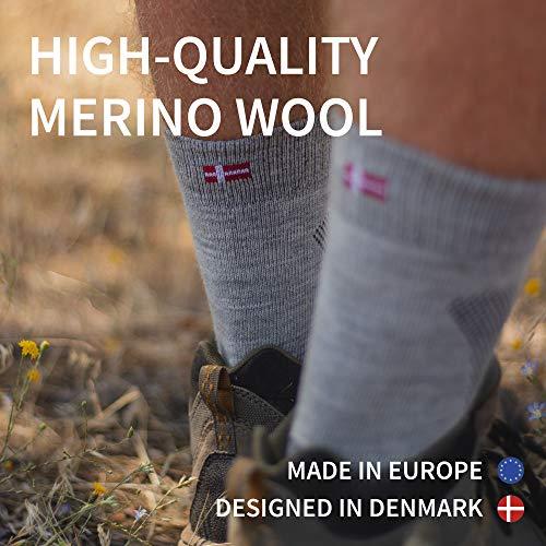 DANISH ENDURANCE Chaussettes de randonnée de Laine de mérinos (EU 43-47, Gris Clair - 3 Paires)