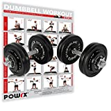 POWRX Gusseisen Kurzhantel 2er Set inkl. Workout I Hanteln Varianten 20kg 30kg 35kg 50kg I Stangen...