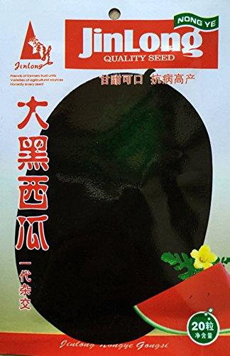 (Mix minimum 5 $) 1 emballage d'origine 20 pcs graines de pastèque graines de fruits de pastèque Densuke, livraison gratuite