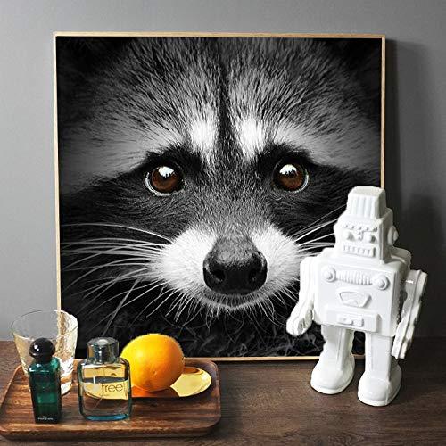 wZUN Moderne und beliebte Tierplakate und Drucke Wandkunst Leinwandmalerei Schwarzweiss niedlichen Waschbärenbild Wohnzimmer Hauptdekoration 50x50cm