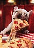 Dog With Cheesy Pizza Slice - Avanti Funny Bulldog Birthday Card