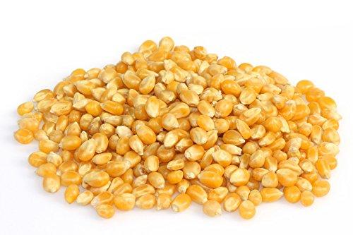 Popcorn Mais | 900g | Qualitätsware | Vitalesia Vitalmühle
