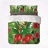 Juego de Funda nórdica Juego de Cama de 3 Piezas Leaf Soft, Hibisco Tropical exótico, Jengibre Rojo y Flores de anturio para el Dormitorio