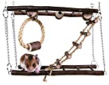 Trixie Small Pet Toy Suspension ...