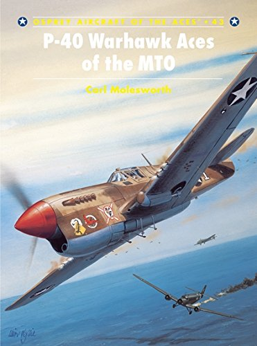 P-40 Warhawk Aces of the MTO (Aircraft of the Aces, Band 43)