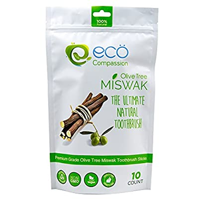 10 Wild Olive Miswak Sticks by Eco Compassion - 100% Natural Healthy Manual Toothbrush - Best Eco Friendly Sewak Chewing Stick for teeth whitening Pen - Whiter Teeth, Fresher Breath - Zaitoon Aswad Za