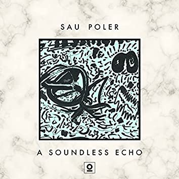 A Soundless Echo