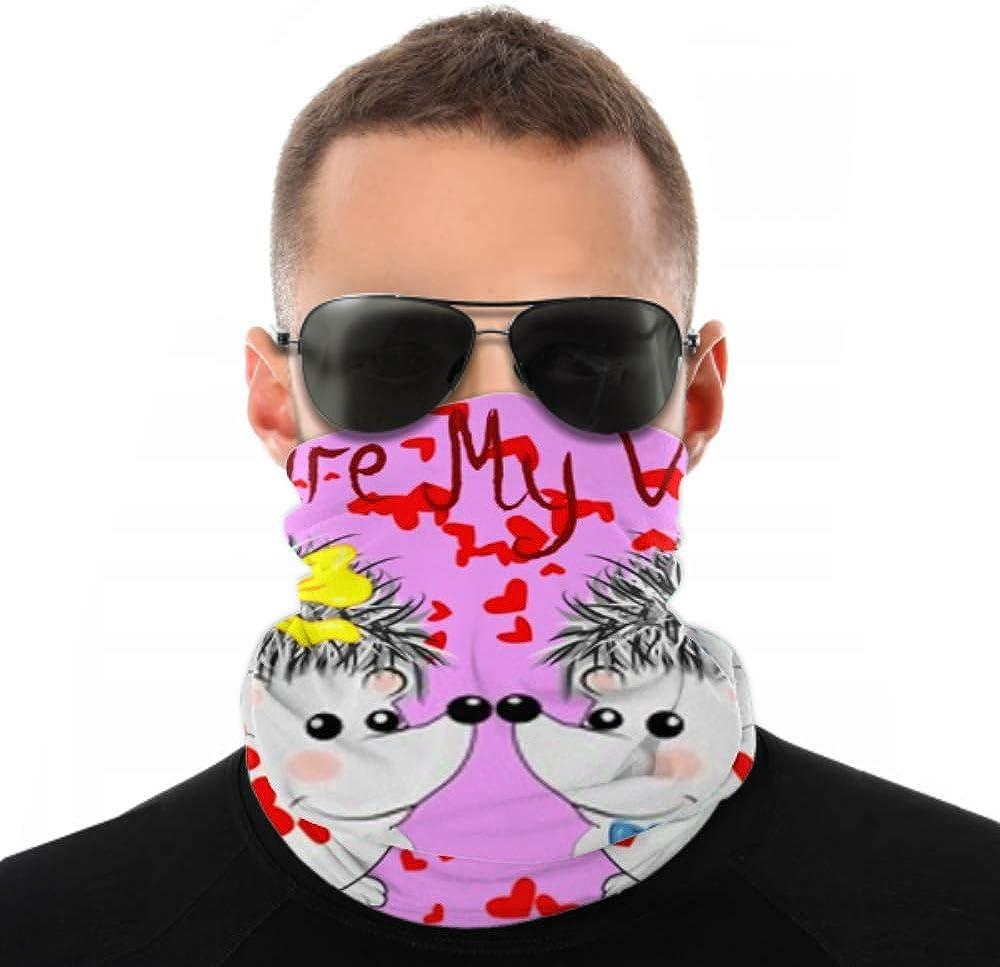 Headbands For Men Women Neck Gaiter, Face Mask, Headband, Scarf Couple Happy Loving Hedgehogs Turban Multi Scarf Double Sided Print Sport Headband For Sport Outdoor