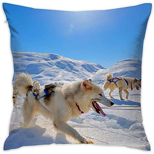Funda de almohada cuadrada con diseño de perro trineo en la nieve personalizable decorativa doble impresa,...