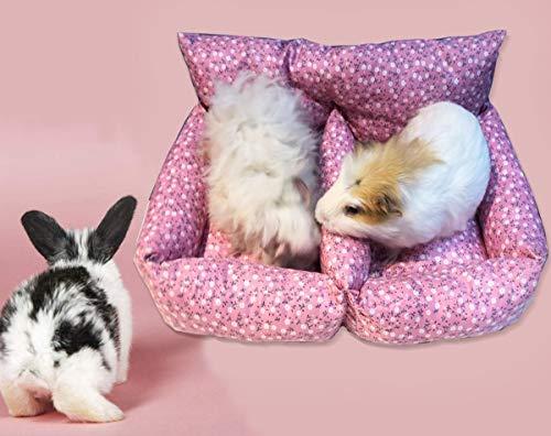 BANGBANGSHOP Tweepersoons Slaapbank voor Rat Hamster Konijn Guinea Varken Ferret Hangmat Speelgoed Huis kooi (Tweepersoonsbank)