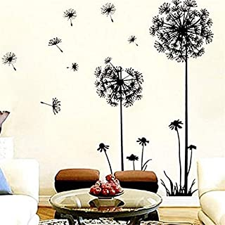 Amazon.com: LA Leona - Wall Stickers & Murals / Paint, Wall ...