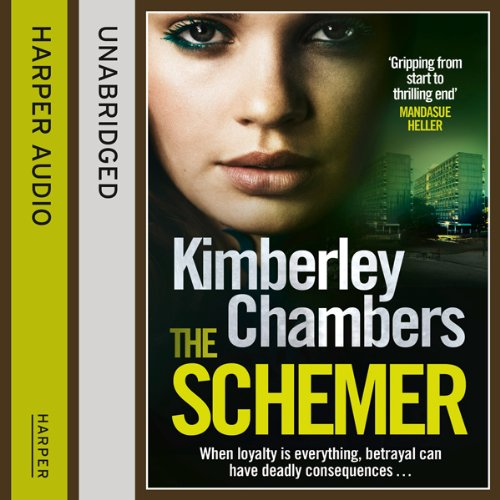 The Schemer audiobook cover art