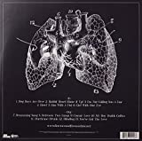 Zoom IMG-1 lungs
