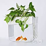 Joyfay Aquaponic Fish Tank- Fish Tank, 3.2 Gallon, Hydroponic Cleaning Tank, Fish Feeds The Plants and The Plants Clean The Tank