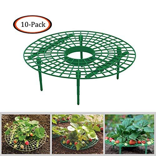 FeiliandaJJ 10 PCS Erdbeer-Schutzunterlage Erdbeerpflanzen unterstützt Erdbeeranbau-Rahmen Pflanzen Rack Plants Hängenden Rack Holder, Schneckenschutz und Schutz vor Fäulnis und Schimmel (Grün)