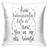 pingshang How Wonderful Life is Elton John Lyric Funda de almohada, impresión de doble cara, funda de almohada con cremallera oculta, hermoso patrón impreso.