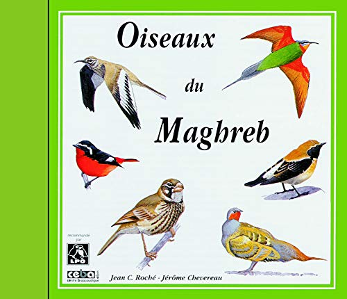 Sounds of Nature: Birds of North-West Africa