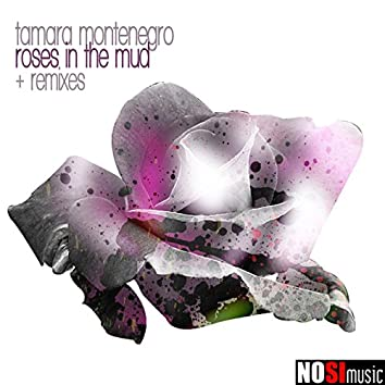 NOSI Music: Roses in the Mud