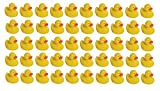Mini Rubber Ducky Baby Bath Toy 50-Pack