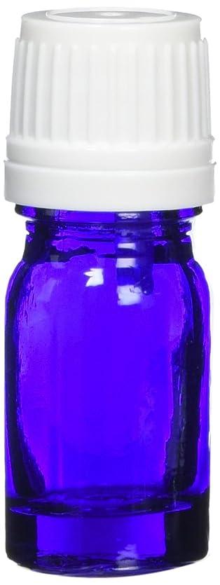 スポンサー警戒情熱ease 遮光ビン ブルー 5ml×10本