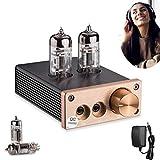 ARCELI Amplificateur intégré de Tube à Vide HiFi, Mini ampli Casque stéréo pour Lecteur Audio Domestique