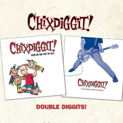 Chixdiggit!