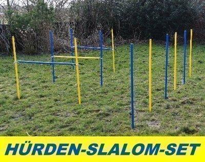 AGILITY-ÜBUNGS-HÜRDEN/SLALOM-STANGEN-SET IN BLAU/GELB