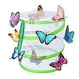 Yeelan Butterfly Habitat Collapsible Bug Catcher Net Mesh Insectos Jaula de Plantas Terrario Pop-up para niños Atrapar grillos/Luciérnaga/Orugas/Mariquita/Pez (Cilíndrico pequeño, 14x15cm)