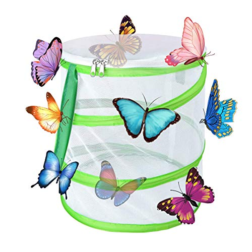 Yeelan Butterfly Habitat Pliable Bug Catcher Net Mesh Insectes Plant Cage Terrarium Pop-up for Kids/Child/Toddler Catching Crickets/Firefly/Caterpillars/Ladybird/Fish (Cylindrical Small, 14x15cm)